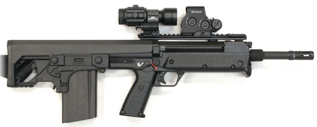 RFB with EOTech and Primary Arms 6x QD Pivot Magnifier
